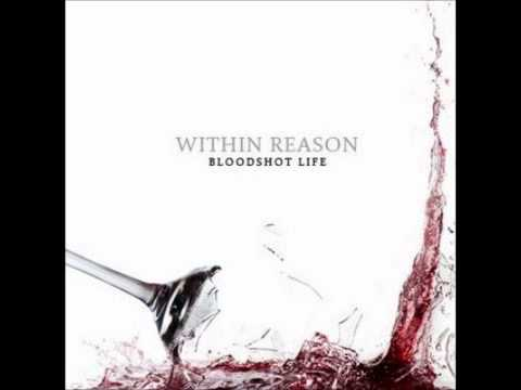 Within Reason - Your Mistake