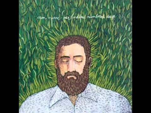 Iron & Wine - Passing Afternoon